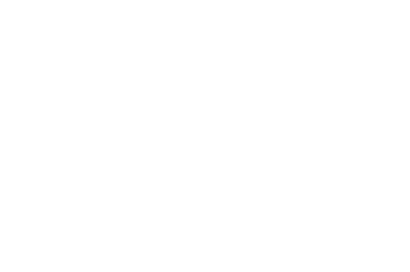 OFFICIAL SELECTION - Calcutta International Cult Film Festival - 2019 2